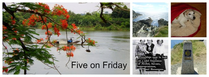 Five on Friday 2